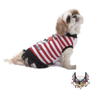 Bret Michaels Pet Halloween Pirate Dog Costume (Large)