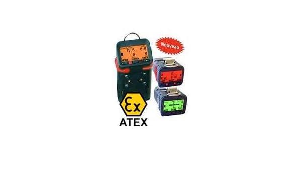 Detector de Gas G450 EX/O2/h2s/CO: Amazon.es: Industria, empresas y ciencia