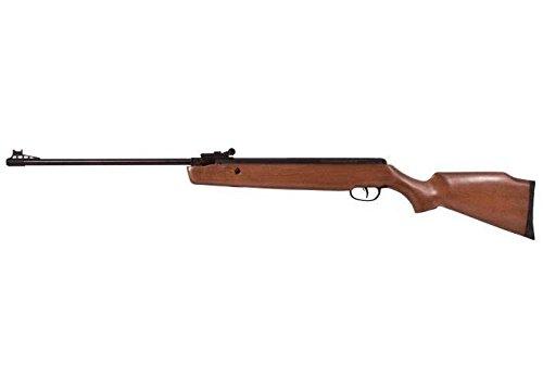 1000 fps rifle - 6