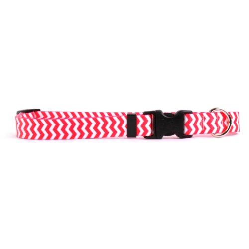 Yellow Dog Design Chevron-Strawberry Dog Collar 3/4