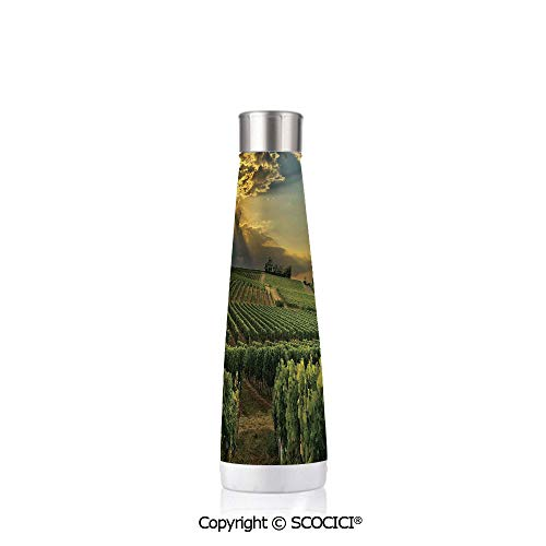 Personalized Design Stainless Steel Cup Winery Decor Sunset Over The Vineyards Of The South Of France Sunbeams Cloudscape Picture Print,Green Yellow Gray