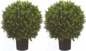 Two 2 Foot Outdoor Artificial Boxwood Ball Topiary Bushes Potted Uv Rated Plants 18 inches -