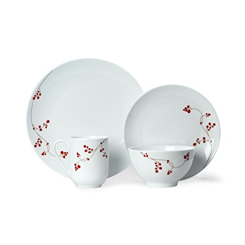 Berries 16 Piece Set (Gourmet Basics by Mikasa Red Berries 16-Piece Dinnerware Set, Service for 4)