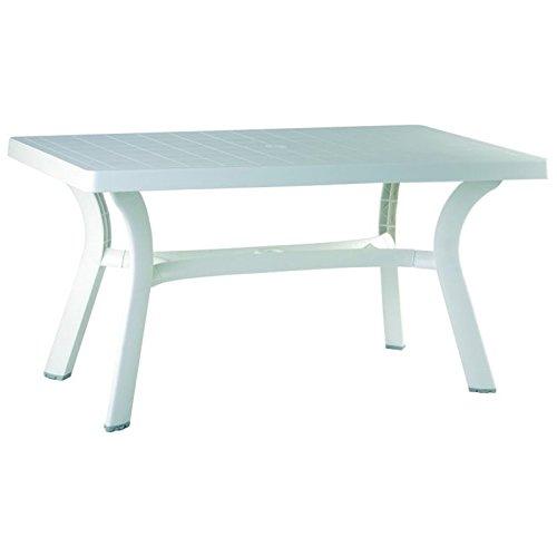 Compamia Sunrise Resin Rectangle Table 55 Inch (29
