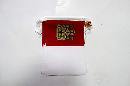 AZ FLAG Guirnalda 6 Metros 20 Banderas de Castilla-LA Mancha 21x15cm - Bandera Castellano-MANCHEGA 15 x 21 cm - BANDERINES: Amazon.es: Jardín