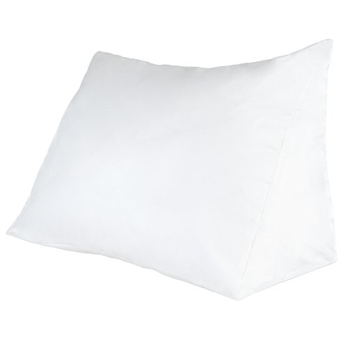 Lavish Home Down Alternate Reading Wedge Pillow