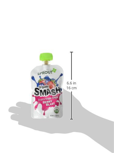 Sprout Organic SMASH Snack Pouches Fruit and Vegetable Puree, Berry Blast, 3.2 Ounce, 16 Count by Sprout (Image #5)