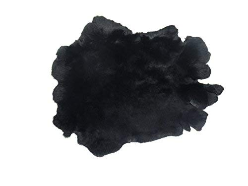 Chichester Inc Real Rex Rabbit #1 Dyed Black: Size AA Pelt Skin Hide (AR-42-15AA) ()