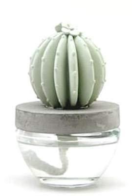 Pretty Valley Home Gypsum Cactus Fragrance Diffuser-Ocean Breeze