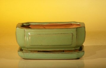 Bonsai Boy's Light Green Ceramic Bonsai Pot - Rectangle Professional Series with Attached Humidity Drip tray 6 37 x 4 75 x 2 625 - Glazed Pottery Cover