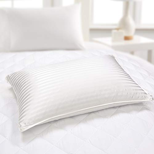 Blue Ridge Home Fashions 500 Thread Count 1cm Silk-Cotton Hybrid Blend 2 Pack King-2PK in White Color Down/Feather Pillows, King