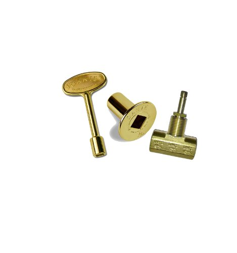 Dante Products Combo Pack with Straight 1/2-inch Globe Valve, Polished Brass Floor Plate and 3-inch Key