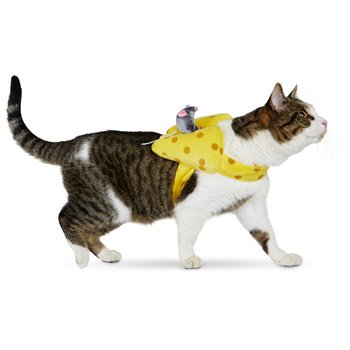 Petco Hallloween Mouse & Cheese Cat Costume, One Size Fits Most