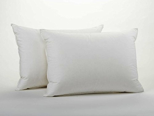 Deluxe 2-Piece Down Alternative Pillow Set W/ 100% Cotton Covers - Micro-denier Pillows W/ 233 Thread-Count, Lofty Fill & Double-Stitch Edges - Hypoallergenic, Dust & Mite Resistant -King Size 20 x 36