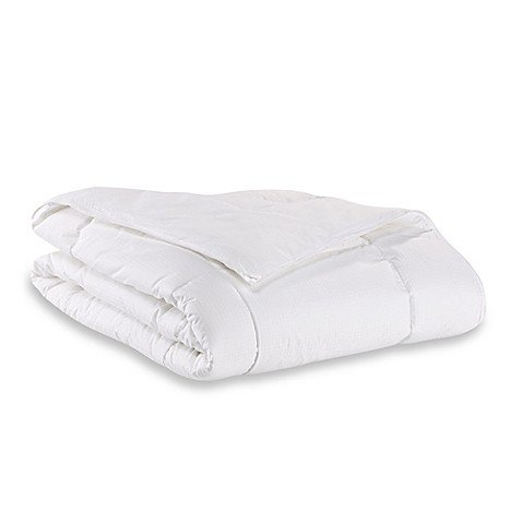 Seasons Collection The Light Warmth Down Alternative Full/Queen Comforter