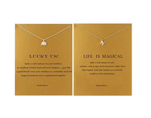 Journey Necklace Set - Hundred River Mountain Necklace with Message Card Gift Card (Silver Unicorn Necklace Elephant Necklace)