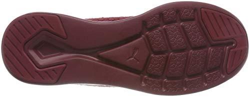 Chaussures Wn Flash Varsity Mtallis Course Grenade Puma Pour Femmes Ignite De Dor Competition rn1BT0frz