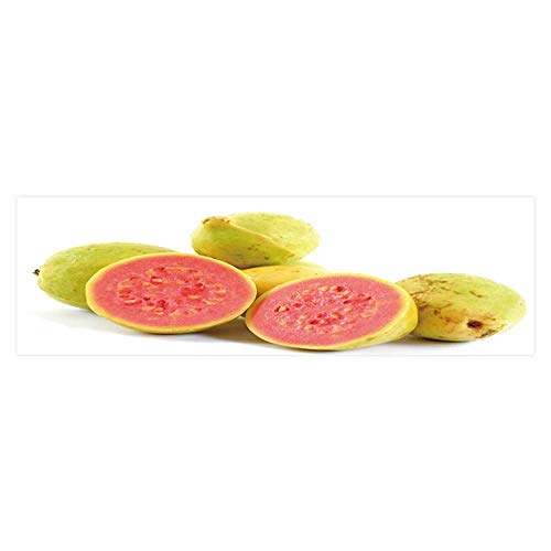 Dragonhome Decor Paper Cling Decals Sticker and Health Guava Fruit Fruit Collection Wallpaper Sticker Background Decoration L29.5 x H11.8