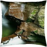 water pool in ricketts glen state park in pa. - Throw Pillow Cover Case (18