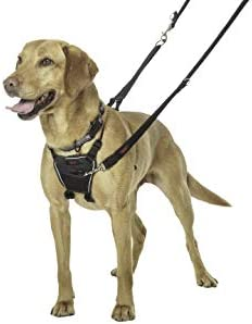 Company Animals Harness Pulling Harnesses product image