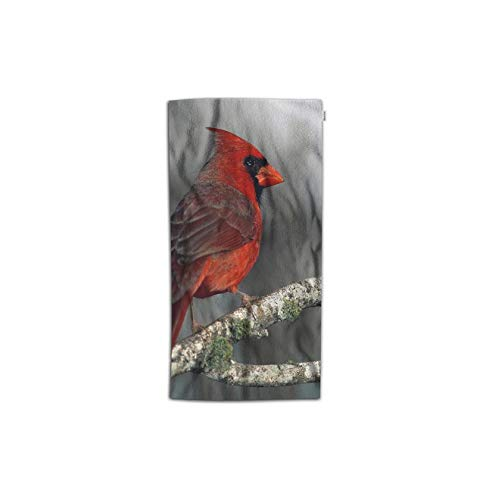 Moslion Bird Hand Towel Nature Animal Red Bird on Bear Tree Branch with Moss Towel Soft Microfiber Face Hand Towel Kitchen Bathroom for Kids Baby Men 15x30 Inch