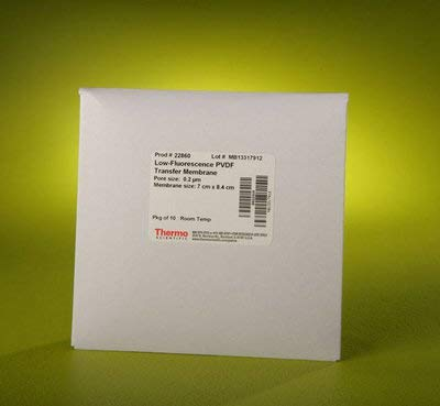 88518 - Pierce PVDF Transfer Membranes, Thermo Scientific - Cuttable Roll - Each