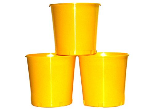 Offering, Donation Buckets, Pack 3, Yellow