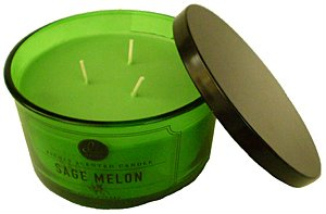Decoware Richly Scented Sage Melon 3-Wick Candle 14.6 Oz. In Glass