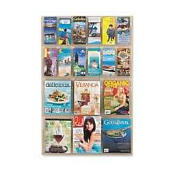 Safco Products 5600CL Reveal Literature Display, 6 Magazine and 12 Pamphlet, Clear