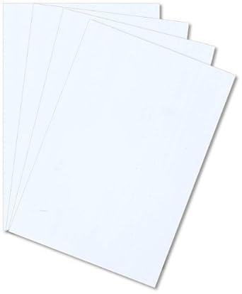 """WHITE STYRENE POLYSTYRENE PLASTIC SHEET .020/"""" THICK 12/"""" X 24/"""" 10 Pack"""