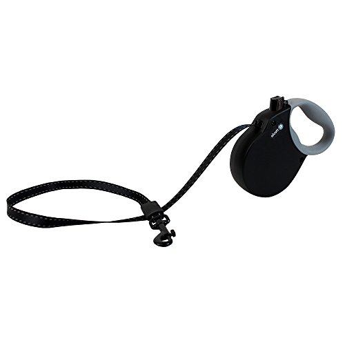 Alcott Adventure Retractable Reflective Belt Leash, 10' Long, Extra Small for Dogs Up to 25 lbs, Black with Grey Soft Grip Handle (Retractable Dog Leash Soft Grip)