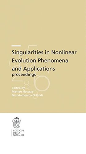Singularities in nonlinear evolution phenomena and applications (Publications of the Scuola Normale Superiore)