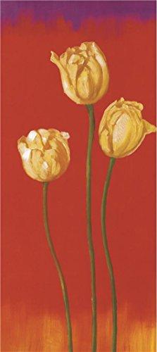 The Perfect Effectキャンバスの油絵`イエロー赤い背景のチューリップ」、サイズ: 30のX 67インチ/ 76x 171cm、このレプリカ芸術装飾印刷は、フィット親類のギフト、ホームギャラリーアートとギフト
