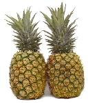 Fresh Tropical Gold Hawaiian Pineapples (Case)