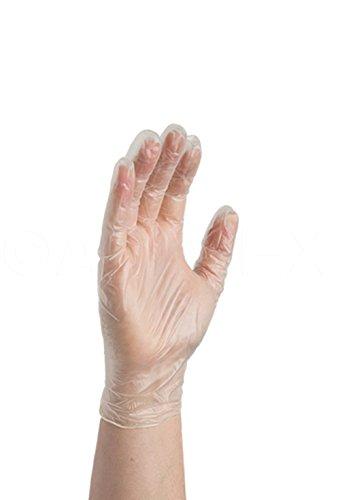 AMMEX GlovePlus Vinyl Disposable Powder Free Gloves - on hand
