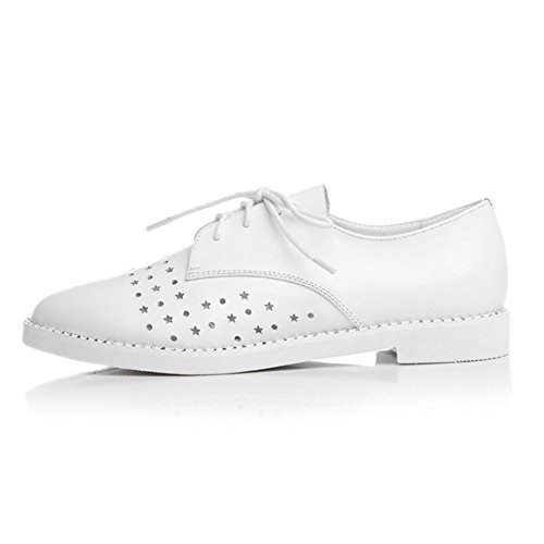Walking White Flat Meshed Shoes Women's MINIVOG Oxfords S7wRgv7q