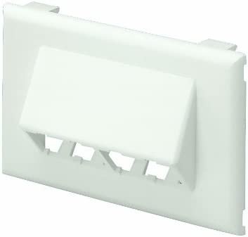 Off White GraybaR Panduit T70FH4IW 4-Port 1-Gang Sloped Raceway Faceplate