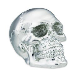 Chrome Skull Gear Shift Knob, Outdoor Stuffs