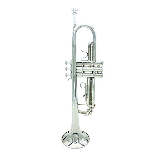 LADE Bb Silver Trumpet Brass Band With Gloves Brush Clean Cloth by SOUND HOUSE 32