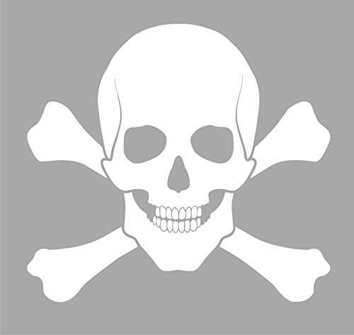 The Rebel Pirate Skull and Cross Bones Vinyl Decal (Rebel Flag Graphic)
