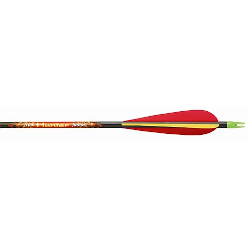 12 - Pk. Beman ICS Hunter Junior Arrows with Vane