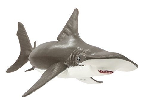 Hammerhead Shark Replica - Safari Ltd Incredible Creatures Collection - Hammerhead Shark Baby - Realistic Hand Painted Toy Figurine Model - Quality Construction from Safe and BPA Free Materials - For Ages 3 and Up