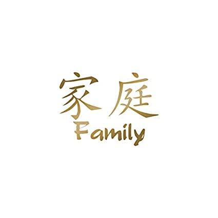 Amazon Chinese Symbols Family Vinyl Decal Sticker 5 X 375