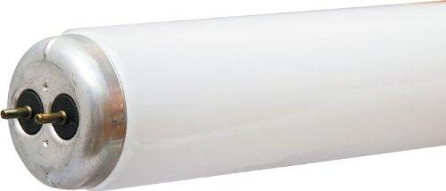 Cool White Fluorescent Tube Light
