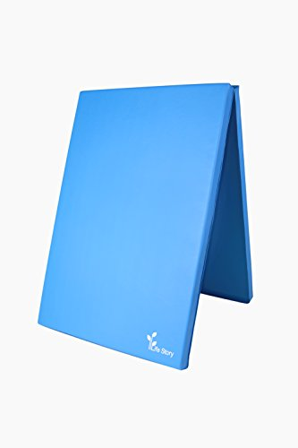 4' Foam Mattress Pad (Exercise Mats Folding, Exercise Pad, 2in Thick Exercise Mat, Gym Mat, Fitness Mat with Handles, 6'x4' Blue, - Life Story)