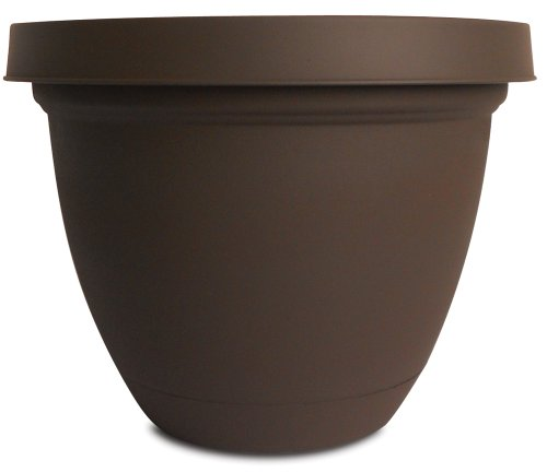 Akro Mils Infinity Planter Attached Chocolate