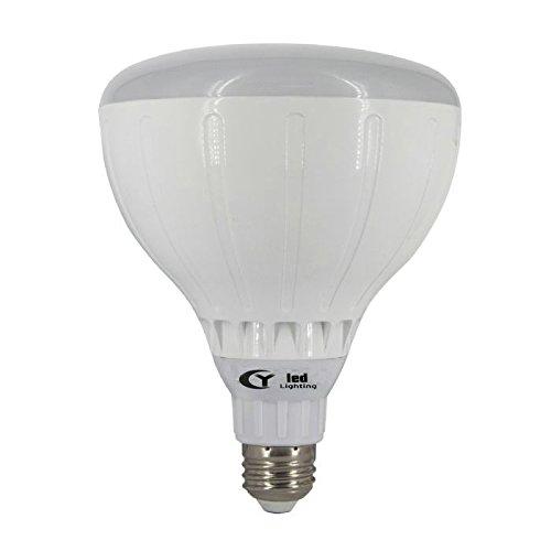 100W Indoor Flood Light Bulb - 8