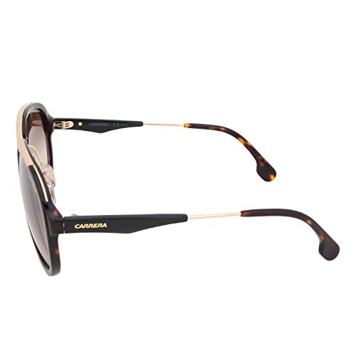 Carrera C57 Gold S Brwn Or 132 Havana z7zqZ