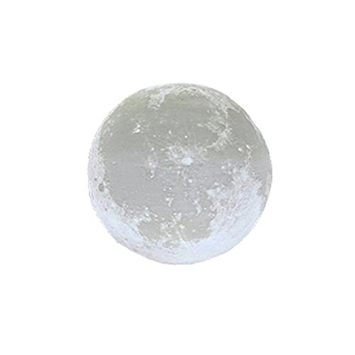Moonlight Design Garden Lighting - 1