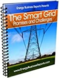 Smart Grip Promises and Challenges, Energy Business Reports, 1607256363
